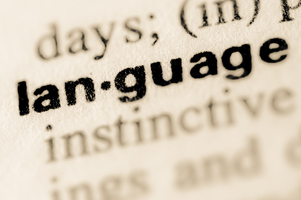 Multilingual Competence